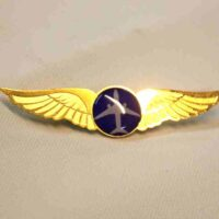 Pilot Wings-Gold plated brass wings without logo for